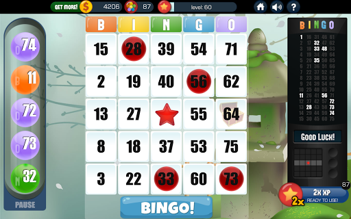 Bingo - Free Bingo Games 2.01.003 screenshots 13