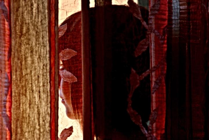 Trasparenze alla finestra di CheccoGuess