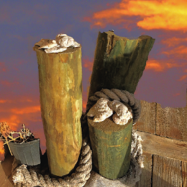 Old Dockside by Edward Gold - Digital Art Places ( digital photography, colorful sky, seashells, old dock, artistic, scenic, old worn rope, digital art )