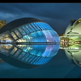 City of Arts and Sciences by Jerzy Szablowski - Buildings & Architecture Public & Historical ( city of arts and sciences, valencia, calatrava )