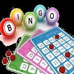 Bingo Madness 1.1