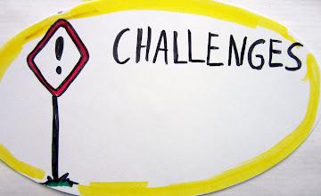 Photo: from UNU VIE visual community - challenges