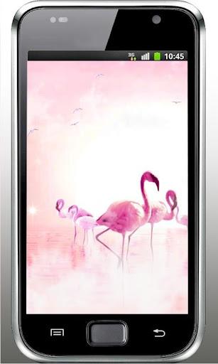 Flamingo Sunrise LWP