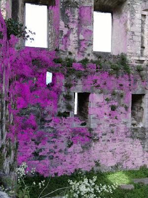 Il castello di arco di stellina80