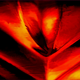 Molten gold by Kittie Groenewald - Abstract Patterns ( abstract, red, metal )