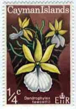 Photo: 1971 Cayman Islands Ghost Orchid - Dendrophylax fawcettii  (Critically Endangered Grand Cayman endemic) on 1/4 cent (one fourth of one cent) stamp. Release date: April 7, 1971.
