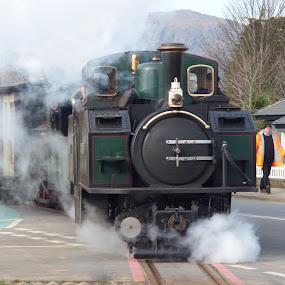 steam train by Nick Parker - Transportation Trains ( train, narrow gauge, steam,  )