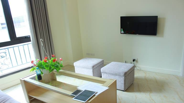 The living - room - Nice and brand – new 2 bedroom apartment in Doi Can street, Ba Dinh district for rent