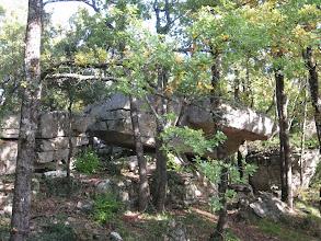 Photo: Forêt de Brocé..      Siou Blanc