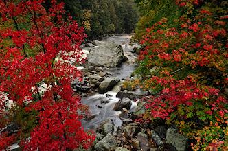 Photo: Ausable River, Wilmington, Ny