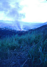 Photo: Ammo dump on fire May 4, 1968 on LZ Peanuts.  Mike Kern picture.
