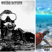 Guide Diving
