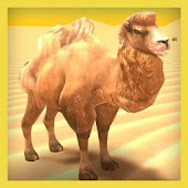 True Camel Simulator
