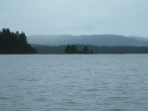 Photo: The Mitkof Island shoreline in Frederick Sound.