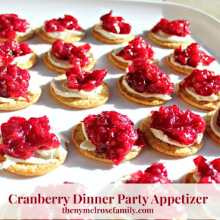 Cranberry Dinner Party Appetizer