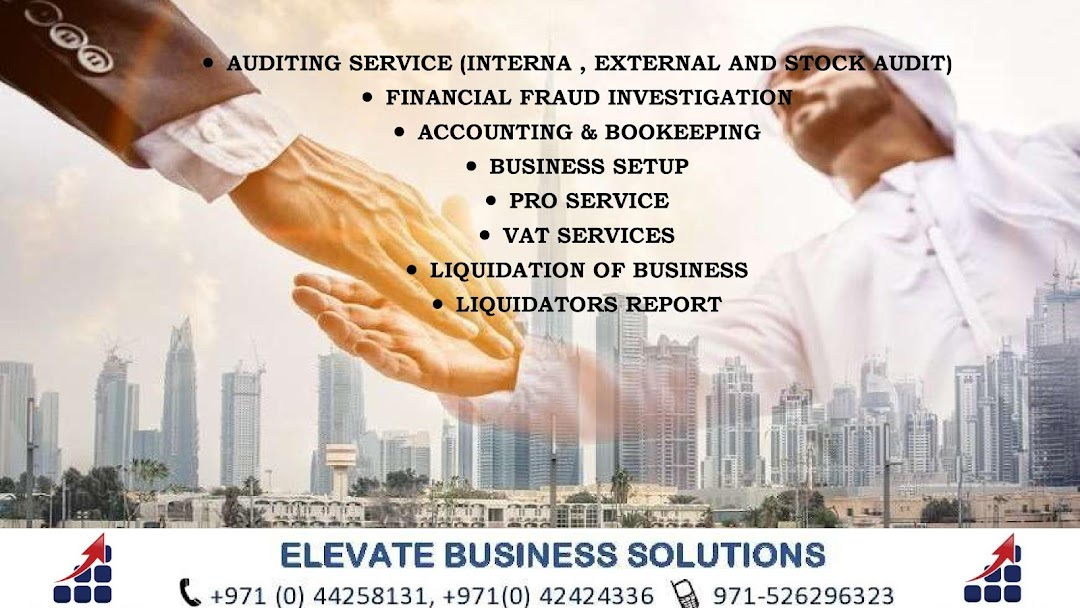 Elevate Business Solutions DMCC - Auditor