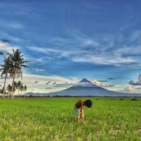 Seeking Hope by Rodel Diaz - Landscapes Mountains & Hills