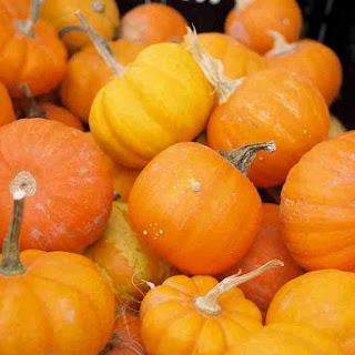 Halloween Squash Souffle