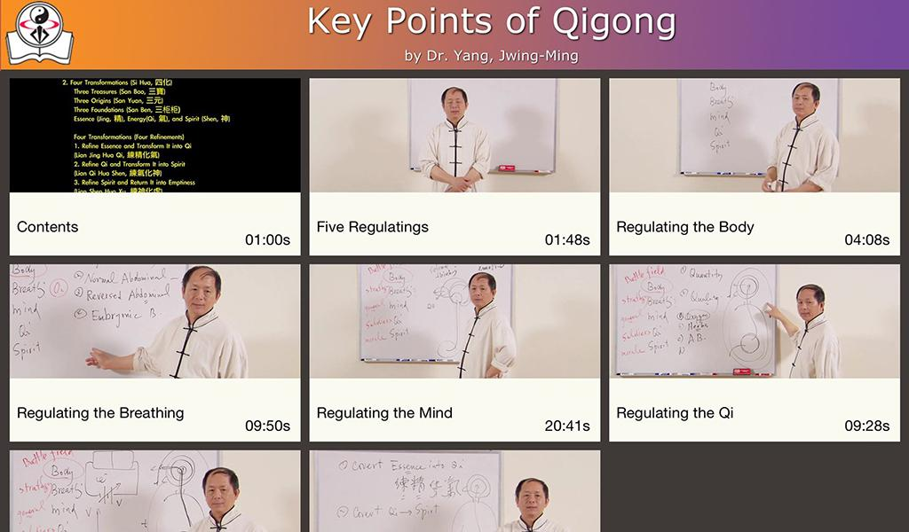 Qigong Keypoints Video Lesson- screenshot