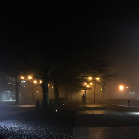 Foggy nights by Anwesh Soma - Instagram & Mobile iPhone ( shotoniphone6s )