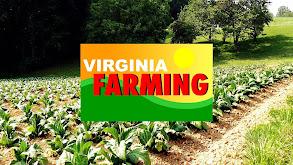 Virginia Farming thumbnail