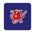 Wales Daily Post icon