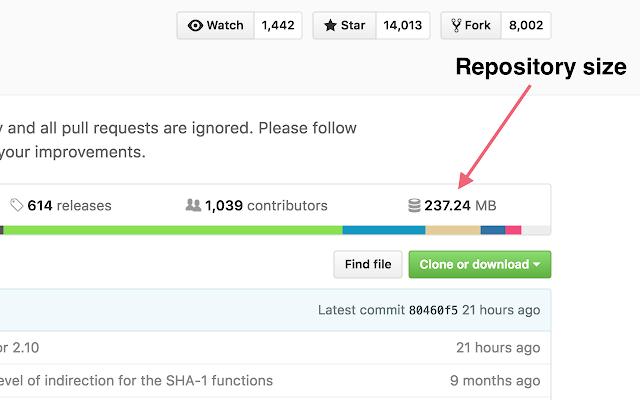 GitHub Repository Size