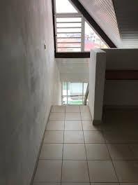 Studio 33,3 m2