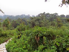 Photo: Musanze district - climbing Bisoke