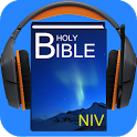 The NIV Audio Bible icon