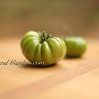 """Healthier Crunchier """"Baked"""" Fried Green Tomato"""