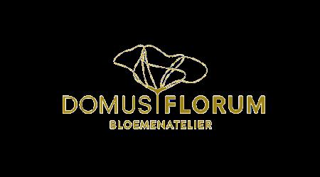 Domus Florum
