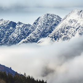 Peaks through the clouds by Patricia Phillips - Landscapes Mountains & Hills ( alaska mountains chugach peaks clouds )