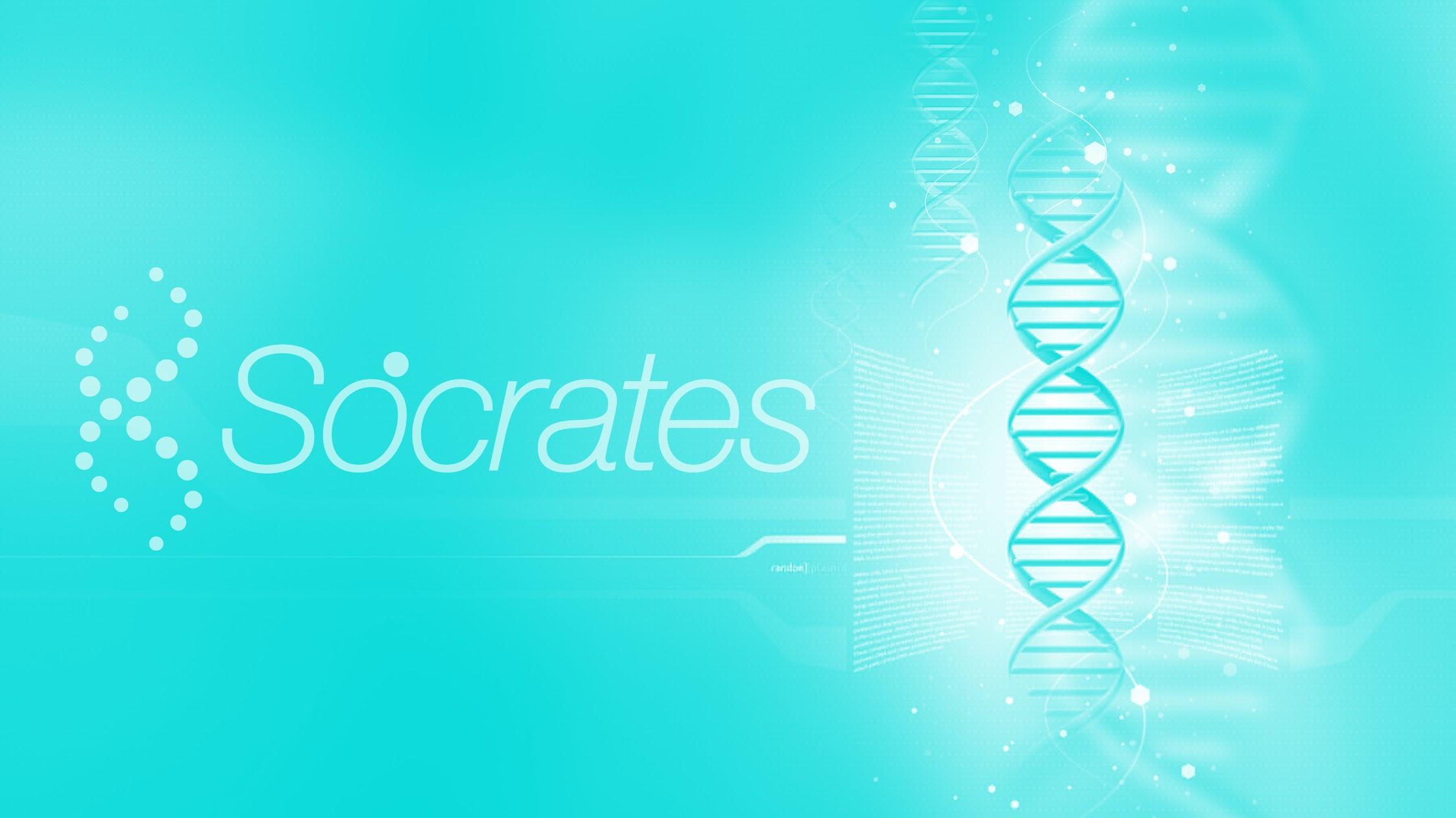 Socrates.cl