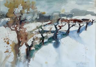 Photo: Winter im Waldviertel, 56x76cm