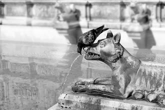 Photo: Siena - Italy