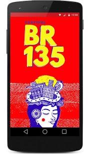 Festival BR135 - náhled
