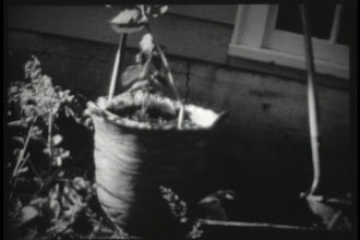 """Photo: Here is the tree and some leafy support branches ? I really do think I'm a bit crazy sometimes looking back. Not that if I'd done a similar thing as a """"sane"""" person it would have turned out any better. But, I also don't think I'd have made this giant pot."""