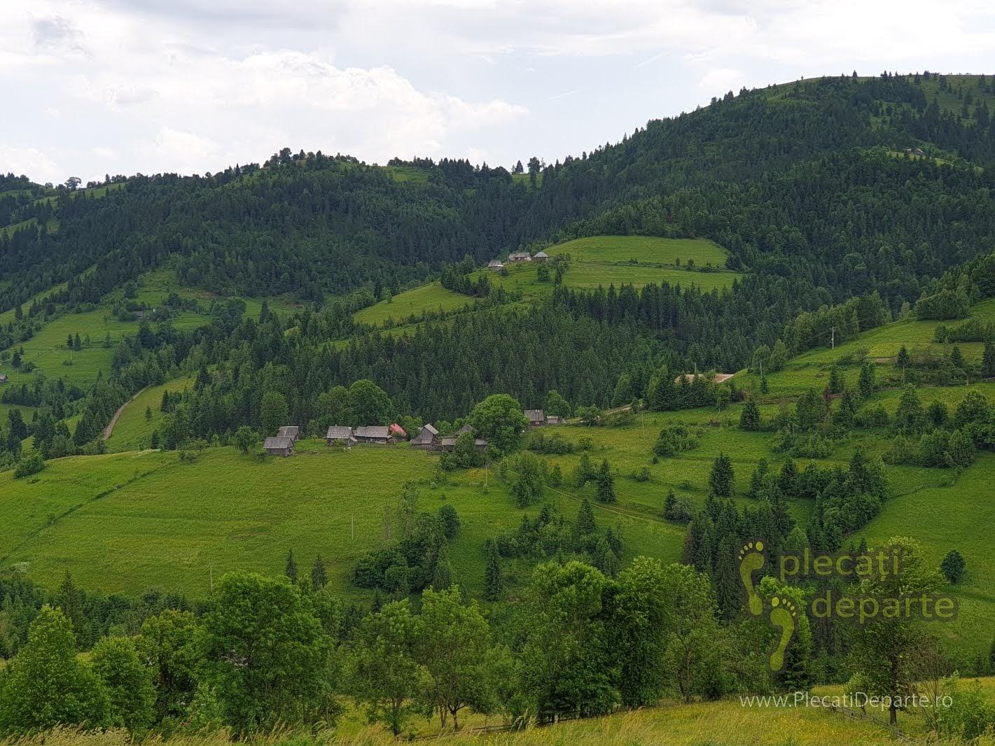 muntii apuseni obiective turistice tara motilor transursoaia trans-ursoaia dn 1R dn1R casa memoriala a lui horea