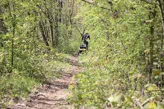 Photo: Day 22 - Off Road on the Side of the Moselle!