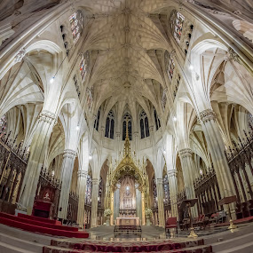 St. Patrick's Cathedral by Linda Karlin - Buildings & Architecture Places of Worship ( church, nyc, worship, historic,  )