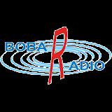 Bobar radio Apk Download Free for PC, smart TV