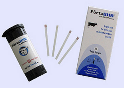 A commercial BHB strip for ketosis.