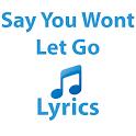 Say You Wont Let Go Lyrics