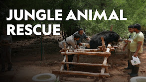 Jungle Animal Rescue thumbnail