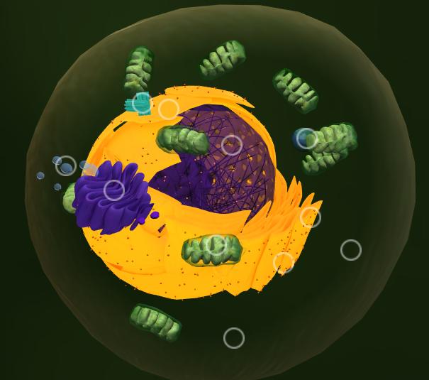 Célula 3D/reprodução