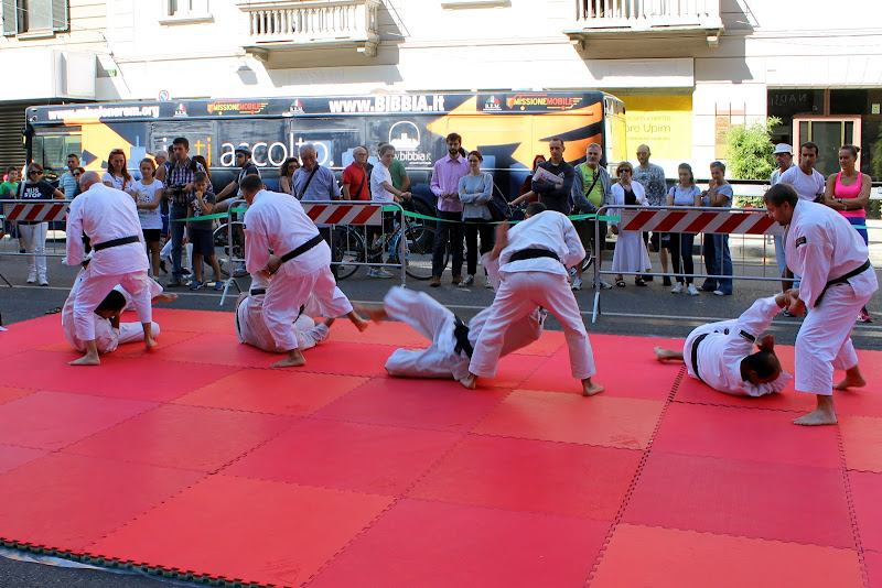 Il Judo di GVatterioni