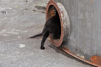 Photo: Ikita på vei inn i en mørk silo.