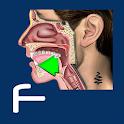 Fricatives icon