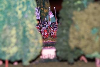 Photo: Il reggimento irlandese del conte di Antrim sulla sponda del Boyne (miniature Venxia, materiale scenico autocostruito)